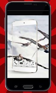 Transparent-Camera-Prank 4