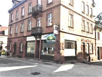 locaux professionels à Reichshoffen (67)