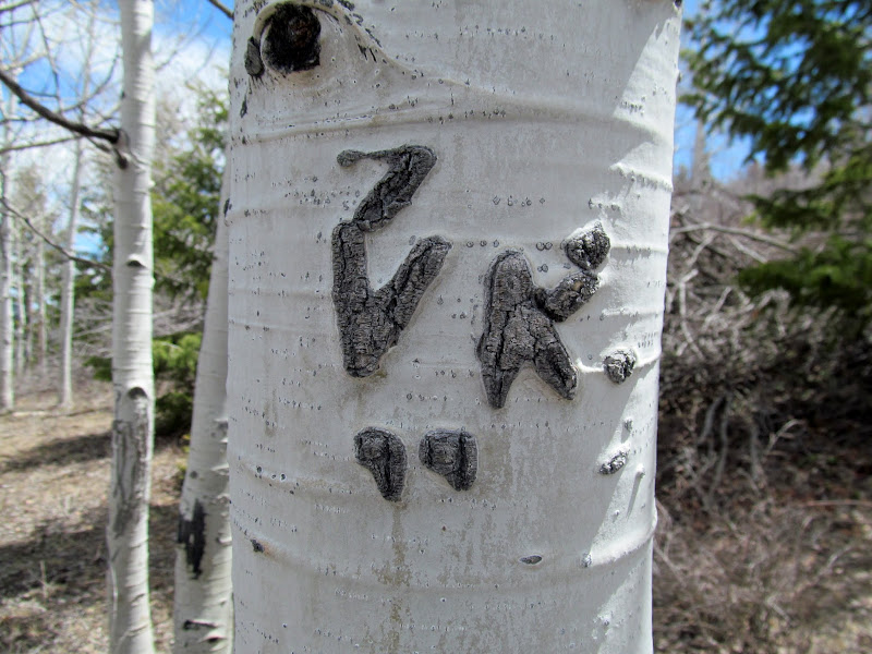 Photo: 7 VK 99 aspen carving