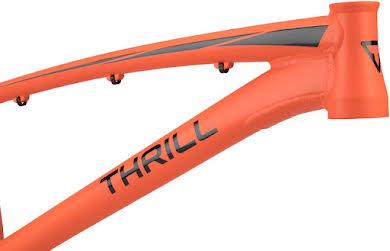Thrill BMX Cruiser Pro XL Frame alternate image 3