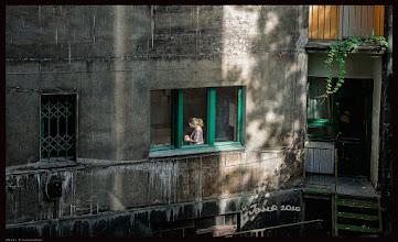 Photo: Urbanity: Backyard with Sunbeam and Girl / am Fenster in einem Hinterhof