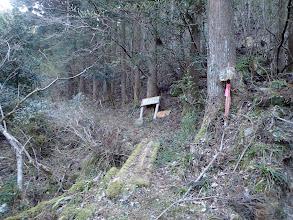 すぐ左に登山口