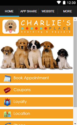 Charlie's Place Doggie Daycare