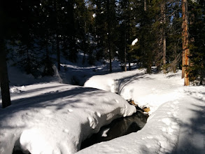 Photo: Spring Creek