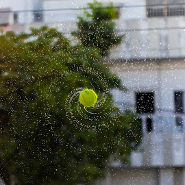 Spinning Water Ball by Alyy Haidaa Shah - Artistic Objects Other Objects