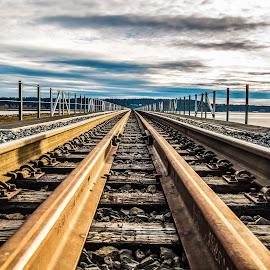 by P Murphy - Transportation Railway Tracks (  )