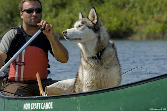 Photo: Paddle adventures with man's best friend