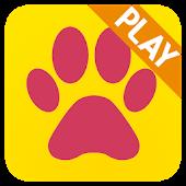 Entertain your dog - PetStudio