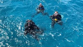 Florida Keys National Marine Sanctuary thumbnail
