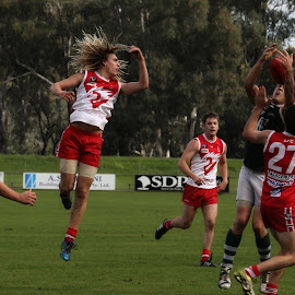 All about the Hair by Susan Marshall - Sports & Fitness Australian rules football ( swans, football, fitness, game day, australian rules,  )
