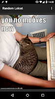 Screenshot of Random Lolcat