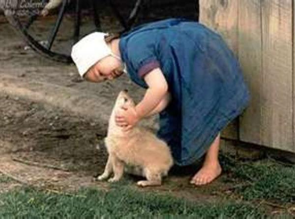 Amish Homemade Baby Wipes Recipe