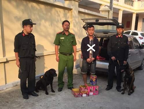 Đội Quản lý, sử dụng động vật nghiệp vụ phối hợp bắt giữ           đối tượng Hoàng Anh Tuấn (X) về tội tàng trữ trái phép pháo các loại vào ngày 11/11/2019