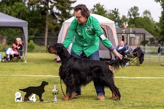 Photo: Openklas reuen / Openclass dogs - Tribal Hunters Till Kingdom Come