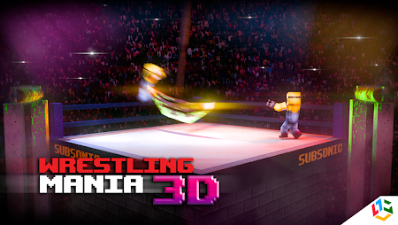 Blocky Wrestle 3D Free Edition 1.1 screenshot 38646