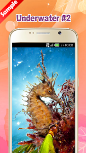 Underwater Wallpaper - náhled