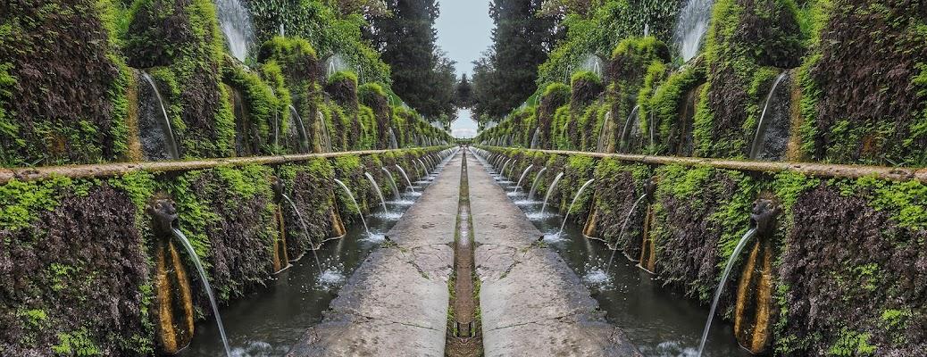 Fresche simmetrie di brunosma