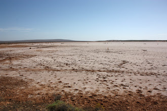 Photo: Year 2 Day 221 - Salty Lake Bed