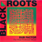 Dub Factor 1 - The Mad Professor Mixes