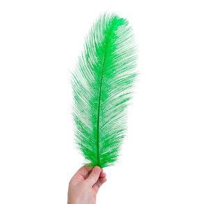Plym, stor 40-45cm grön