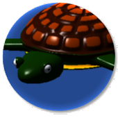 Turtle Drift