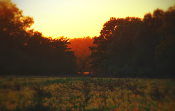 Photo: North countryside Excelsior Springs, Mo.