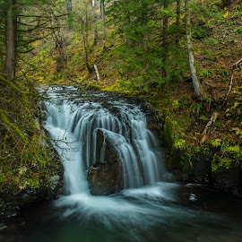 Upper Multnomah by Ivan Johnson - Landscapes Waterscapes (  )