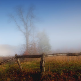 by Kara Brothers - Landscapes Prairies, Meadows & Fields ( field, fence, tree, nature, fog, tennessee, morning, landscape, cades cove, smoky mountains )