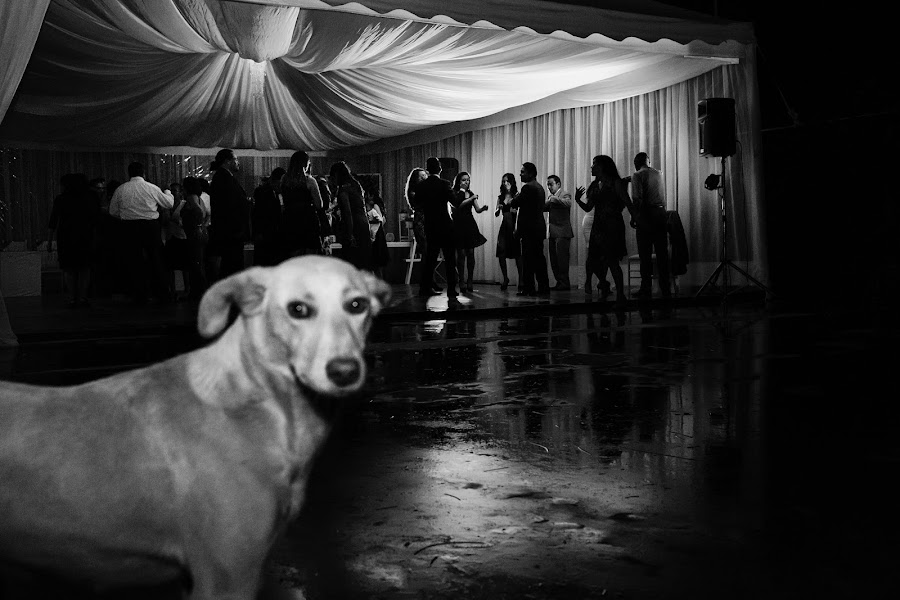 Wedding photographer Viviana Calaon moscova (vivianacalaonm). Photo of 20.01.2018