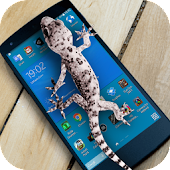 Lizard in phone funny joke
