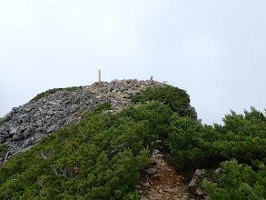鳴沢岳の山頂が近くに