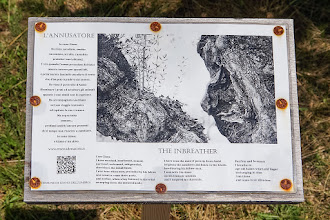 Photo: Plaque commemorating the second oldest olive tree in Italy