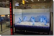 Schiphol Airport Dec 1 09
