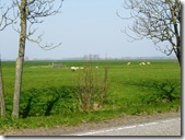 Countryside outside Leeuwarden 1