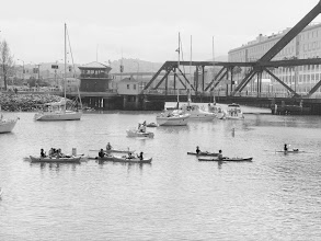Photo: McCovey Cove Regatta