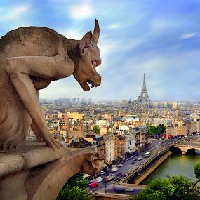 Notre Dame Gargoyle - Paris by Lee McLaughlin - Travel Locations Landmarks ( summer day, chimera, river seine, aerial, city, sculpture, paris, eiffel tower, statue, atop notre dame, gargoyle, france, cathedral, stone griffin )