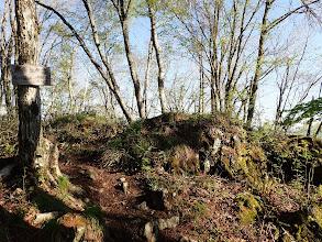 カモシカ岩