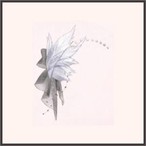 黒焔のベール-羽