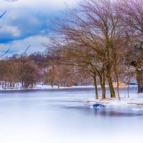 Frozen lake by Aurelio Firmo - Landscapes Weather ( snow, lake, new york,  )