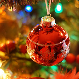 Christmas Happiness by Wendy Alley - Public Holidays Christmas (  )