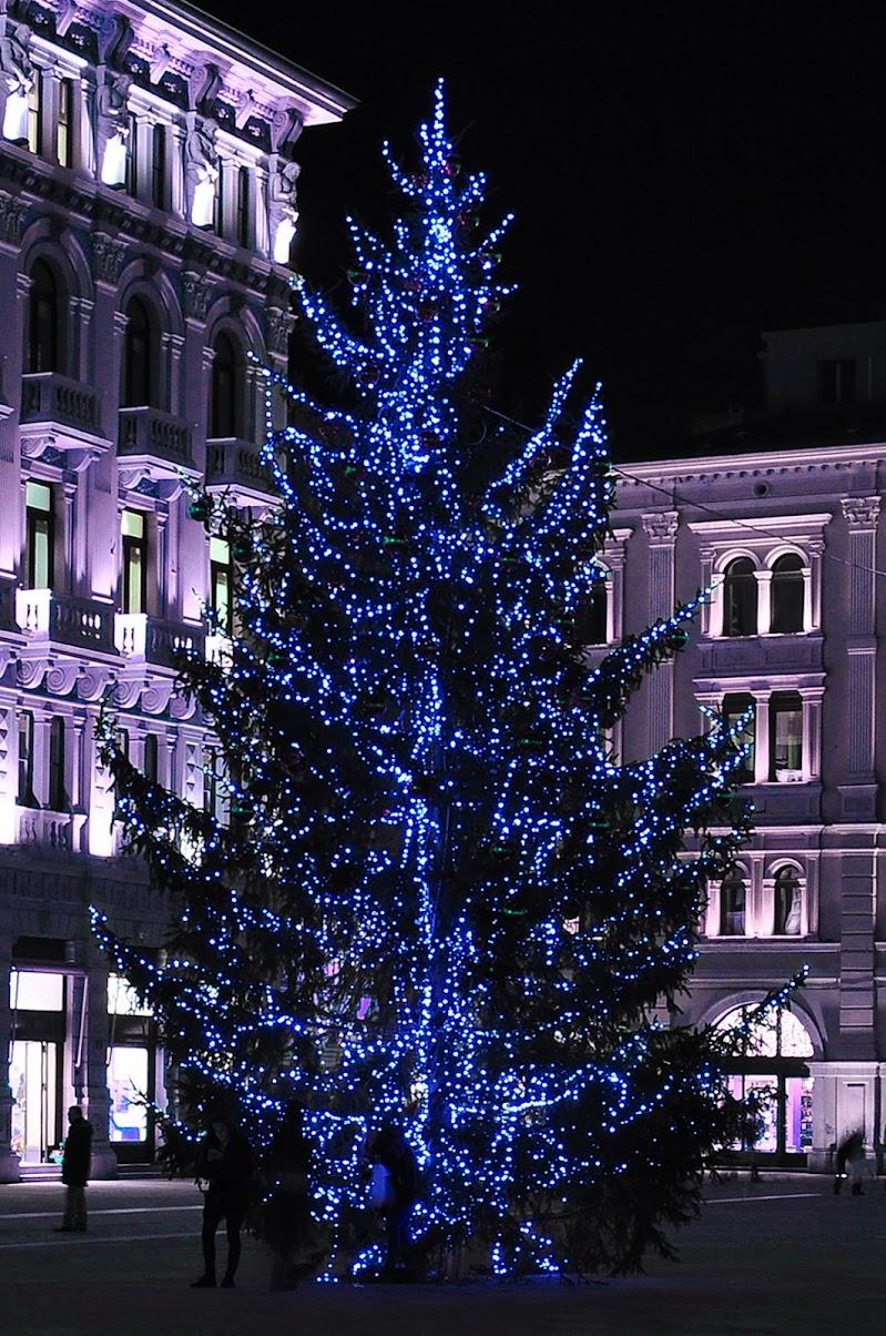 City lights di mcris