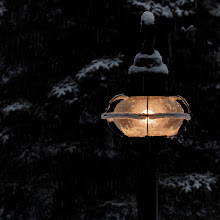 Photo: Warm beacon on a chilly morning  The first snow of the winter gave me an opportunity to experiment a little with exposure and white balance with the lamp post in the frontyard. A 365 is about learning. Today was more about the technical than the aesthetic. Hope you all don't mind.  #365Project curated by +Simon Kitcher