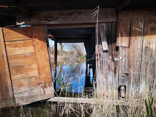 anatre in baracca di laudano