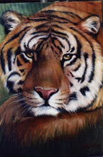 Photo: WL007 Tiger (for 18 x 24 canvas) $7.99