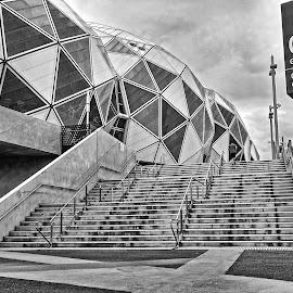 apm by Glen John Terry  - Buildings & Architecture Architectural Detail ( detail, stadium, architecture,  )
