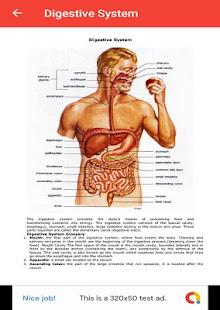 Download Human Anatomy For PC Windows and Mac apk screenshot 3