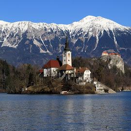 Bled Slovenia by Igor Martinšek - City,  Street & Park  Vistas