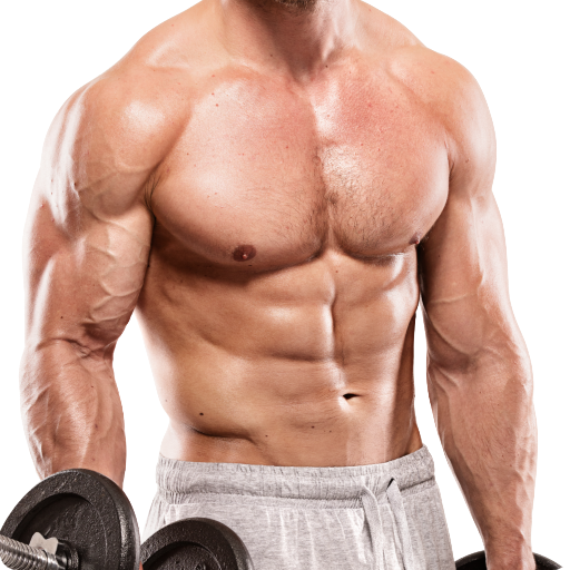Pro Gym Workout (Gym Workouts & Fitness) - Apps on Google Play