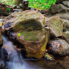small waterfall by Mehdi Laraqui - Nature Up Close Water ( water, nature, green, nature up close, forest, motion, river., rocks, black )