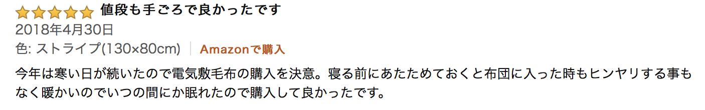電気敷き毛布 購入Review